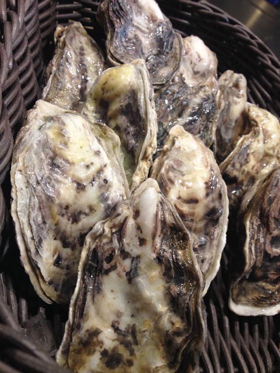 小長井 牡蠣の食材