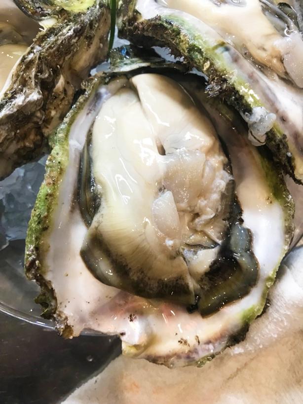 答志島 魚、牡蠣の食材